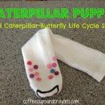 Caterpillar Puppet and Song