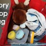 Story Prop Bag Comprehension Activity