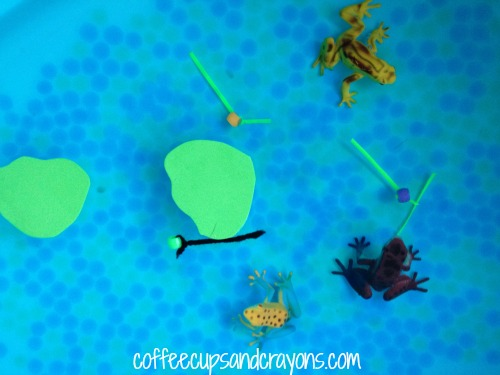 Life Cycle of a Frog Sensory Bin
