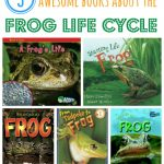 Frog Life Cycle Books for Kids