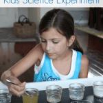 Does it Dissolve? Kids Science Experiment