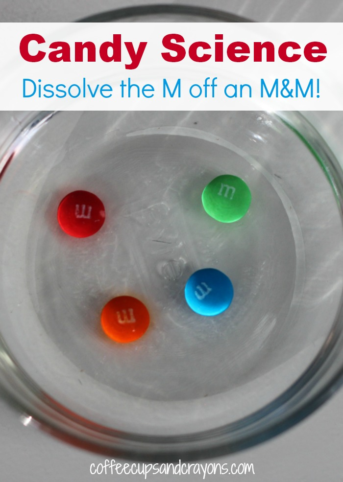 Candy Science for Kids! How to dissolve the M off an M&M. Great for all that Halloween candy!