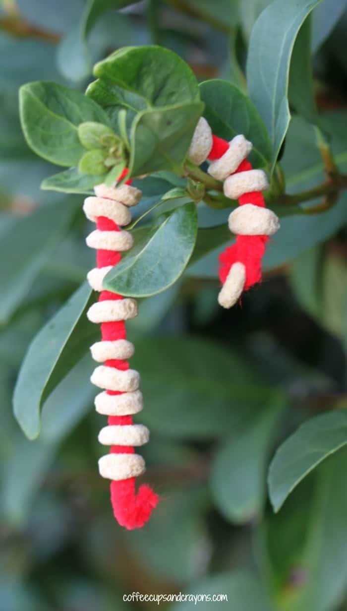 Bird Food Ornaments!  A fun random act of Christmas kindness for kids.