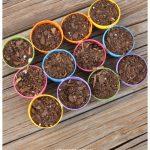 Plastic Egg Mini Planting Pots