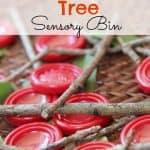 Build an Apple Tree Sensory Bin