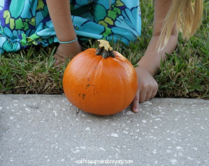 Non-Standard Measurement Activity to Teach Kids to Measure!