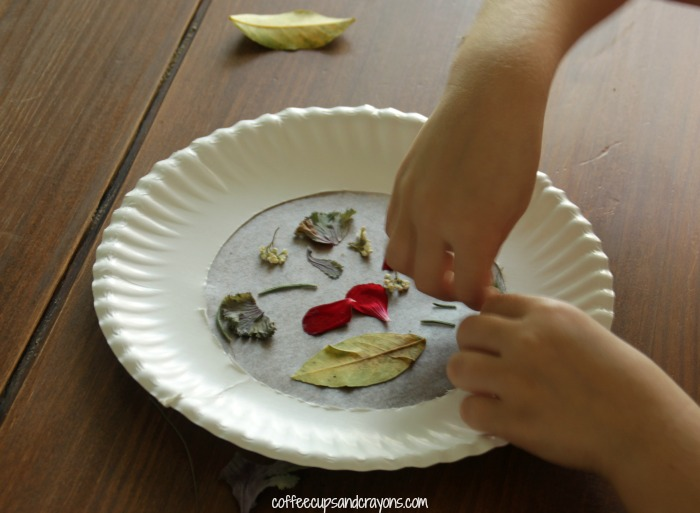 How to Make a Preschool Nature Suncatcher
