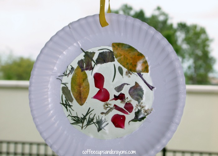 Nature Suncatcher Craft for Preschool Kids