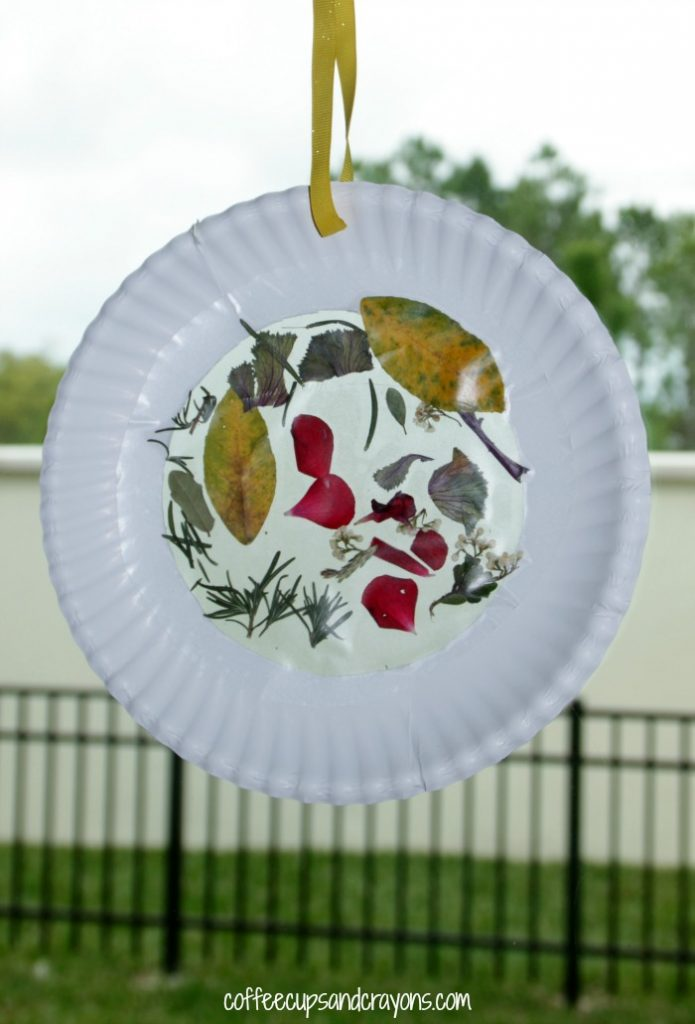 Nature Suncatcher Craft For Kids Coffee Cups And Crayons
