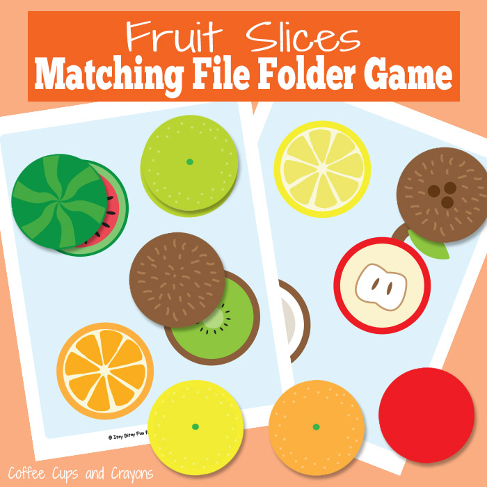 Fruit Slices File Folder Game