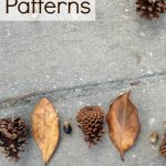 Math Patterns in Nature