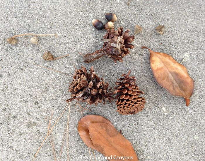 Use natural materials to teach kids math patterns!