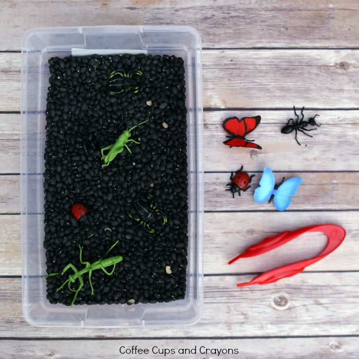 Fine Motor Bug Sensory Bin for Preschool
