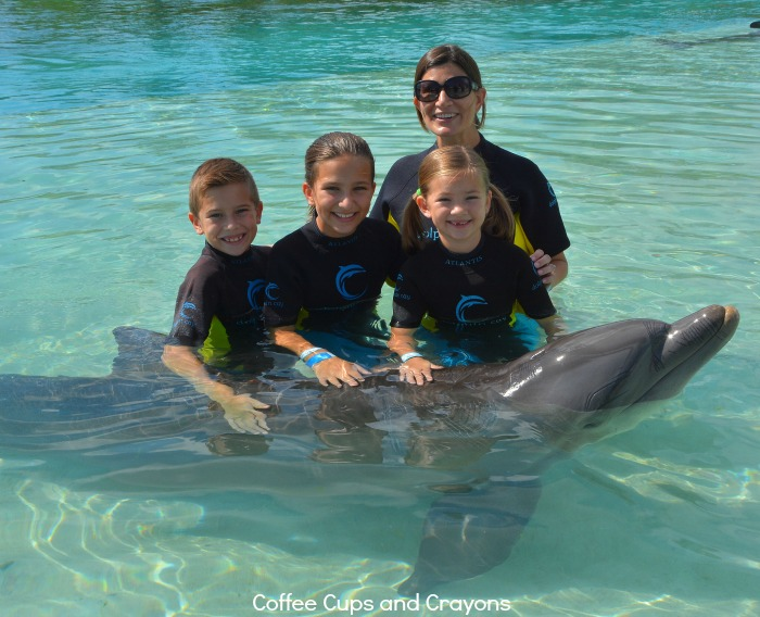 Swimming with the dolphins at Atlantis Resort in the Bahamas!