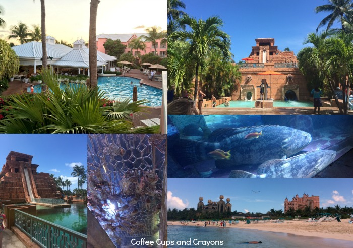 Why it really is better in the Bahamas! Where to stay an what to do when you travel there with kids!