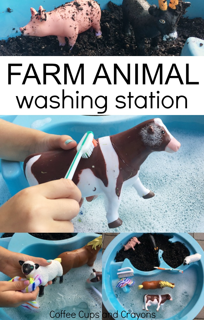 A farm animal washing station is a big hit with preschool kids! Set it up as a sensory bin today.
