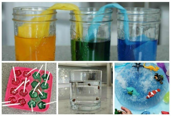 preschool-science-projects-kids-love